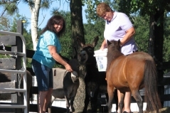 Mary Ann and Fran with Casey, Reggie & Mini Pearl