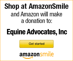 Shop Amazon Smile to support Equine Advocates