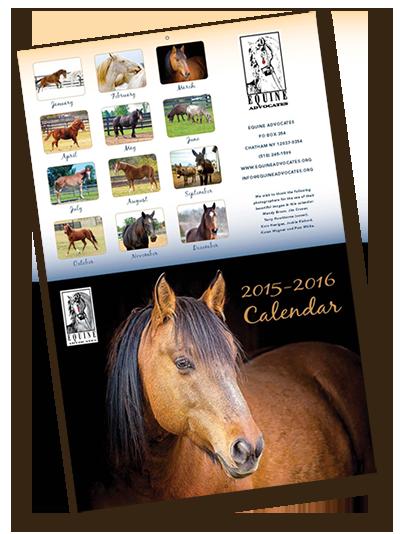 Equine Advocates 2016 Calendar