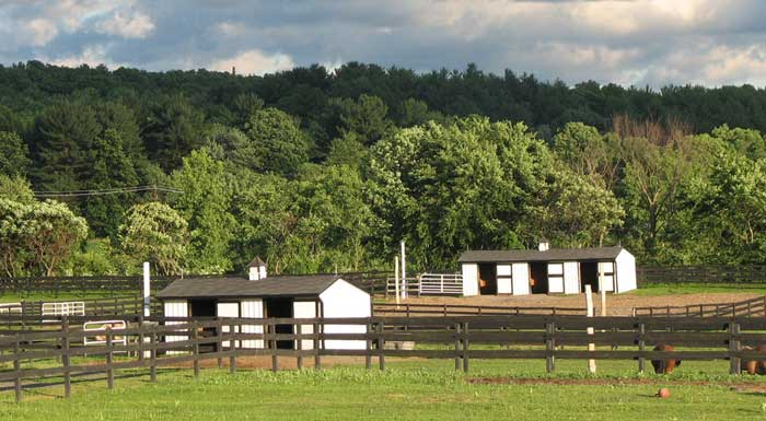 2-3 stall barn at Equine Advocates