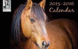2016 Equine Advocates calendar