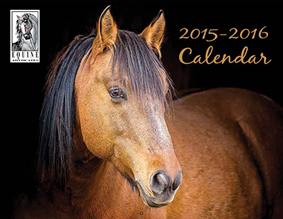 You are currently viewing 2016 Equine Advocates Calendar