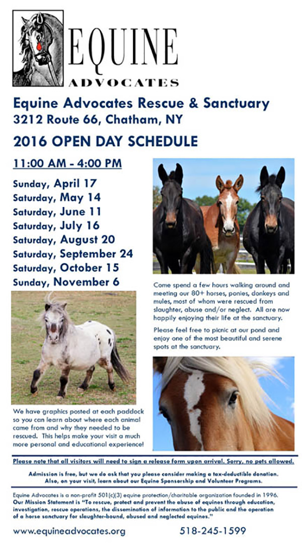 2016 Public Open Days – Equine Advocates