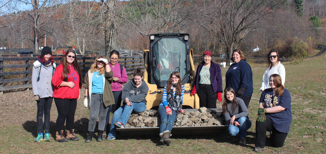 Girl Scouts at Equine Advocates