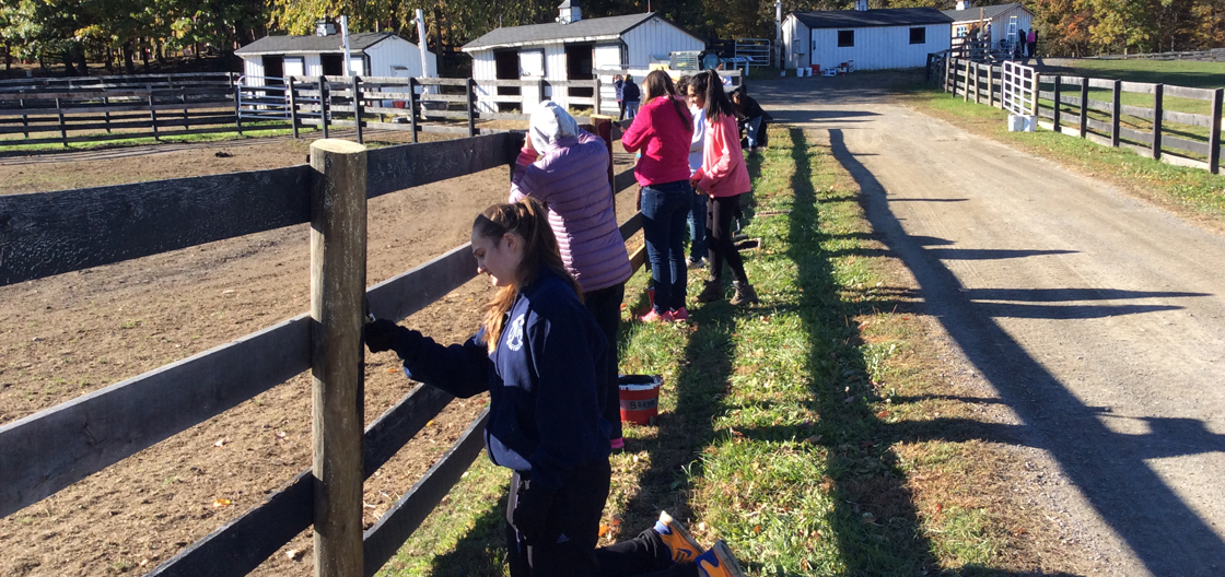 School Group at Equine Advocates