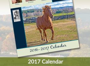 Equine Advocates Calendar