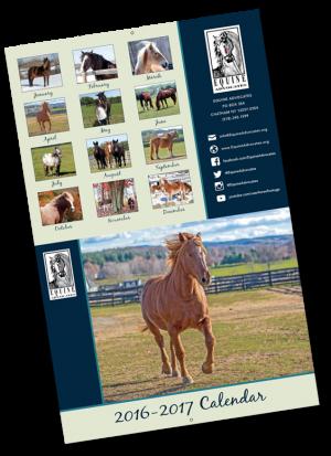 2017 Equine Advocates Calendar