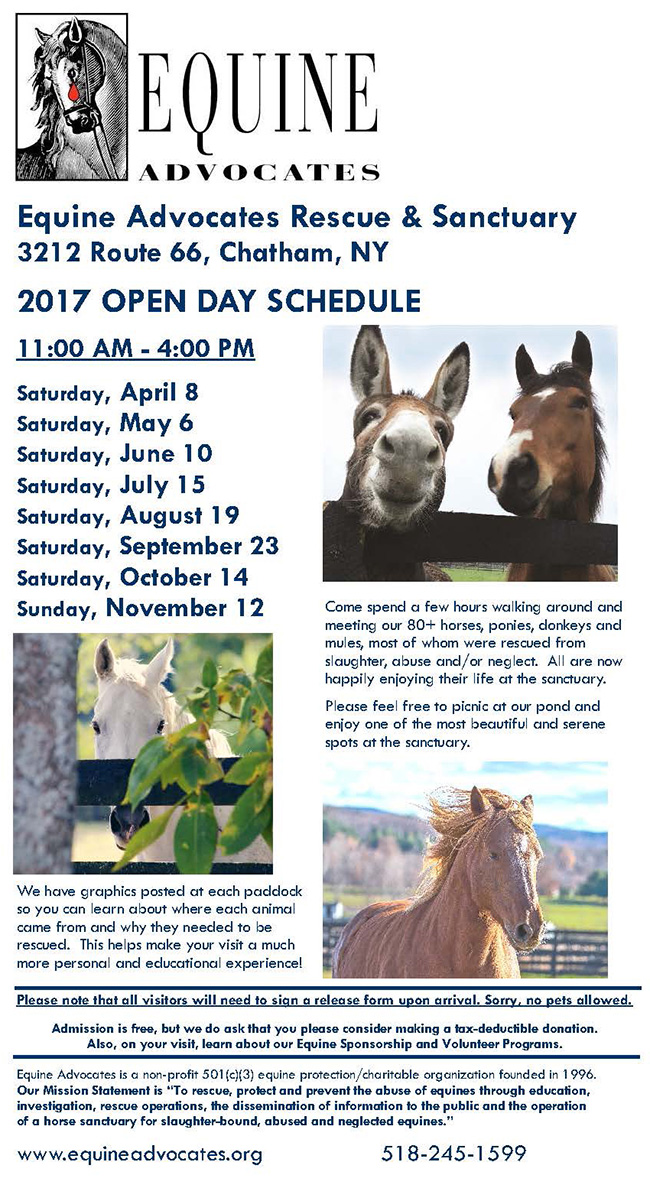 Equine Advocates Open Day 2017