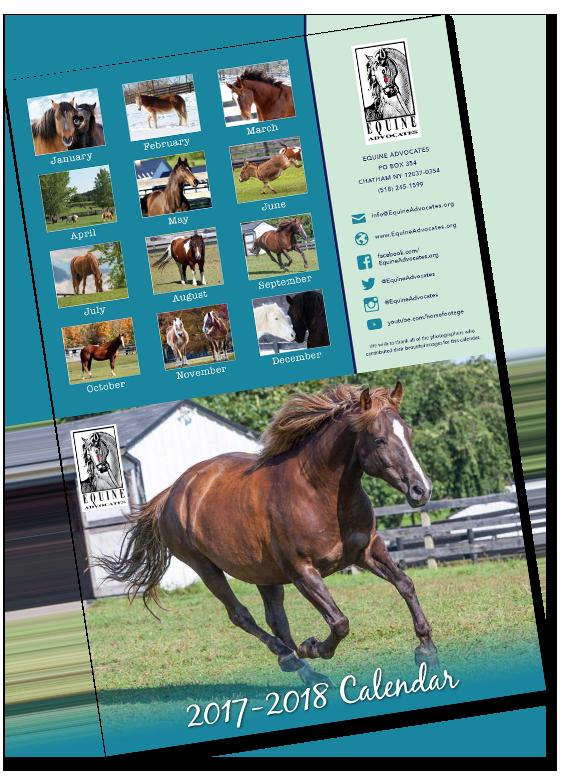 2018 Equine Advocates Calendar