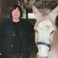 Equine Advocates Featured on Forum 13 on WNYT TV