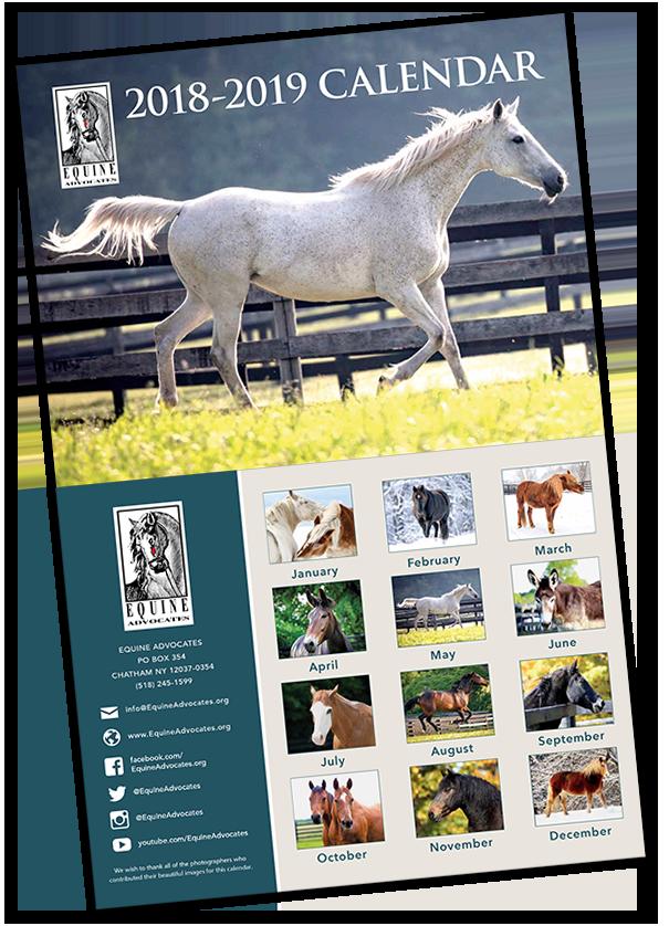 Equine Advocates 2019 Calendar