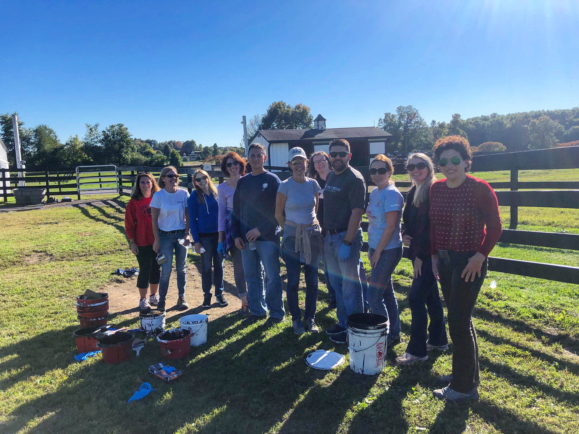 You are currently viewing Metzwood Insurance Spends Employee Volunteer Day at Equine Advocates