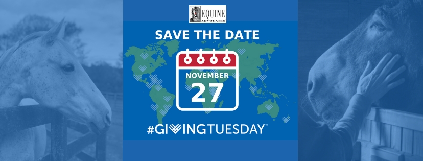 You are currently viewing Giving Tuesday: November 27!