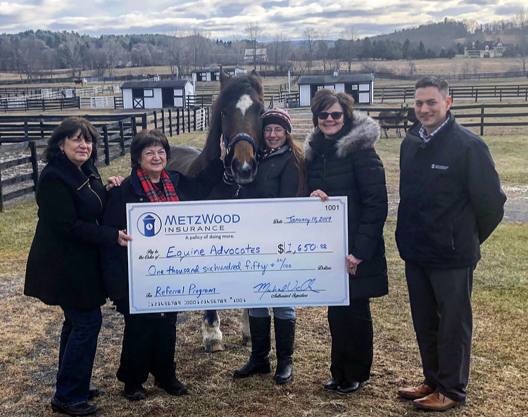 You are currently viewing Equine Advocates Receives $1,650 from MetzWood Insurance Charity Referral Program