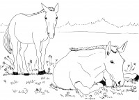 COLORING BOOK - Page_10