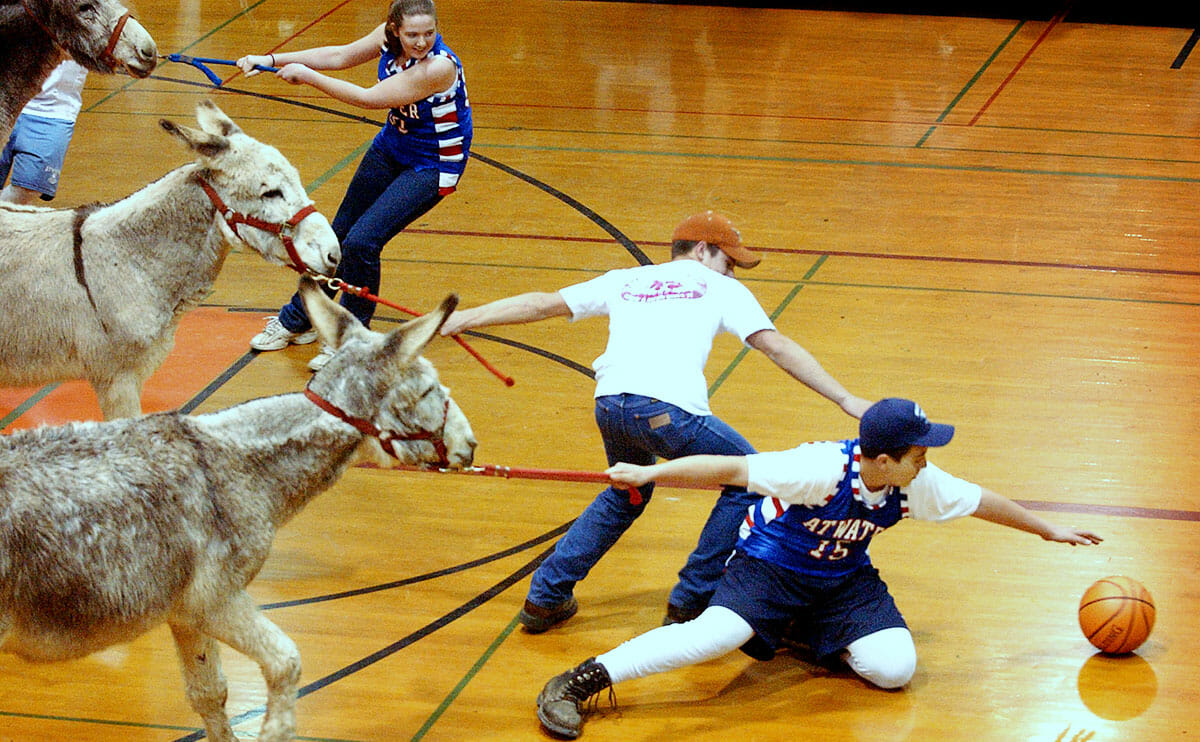 """You are currently viewing Say NO to the Donkey Basketball """"Trend"""""""