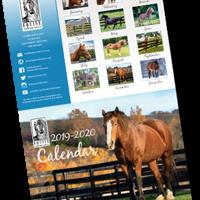 2020 Equine Advocates Calendar Available Now!