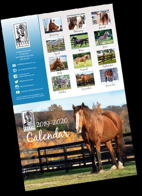 2020 Equine Advocates Calendar