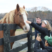 Thank you for spending your weekends with Equine Advocates