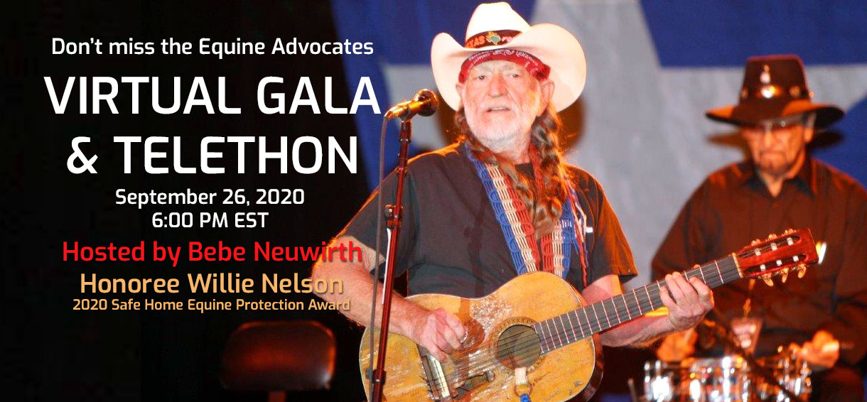 2020 Virtual Gala