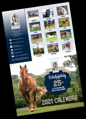 2021 Equine Advocates Calendar