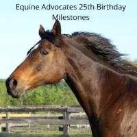 Equine Advocates 25th Birthday Milestones – Part 5